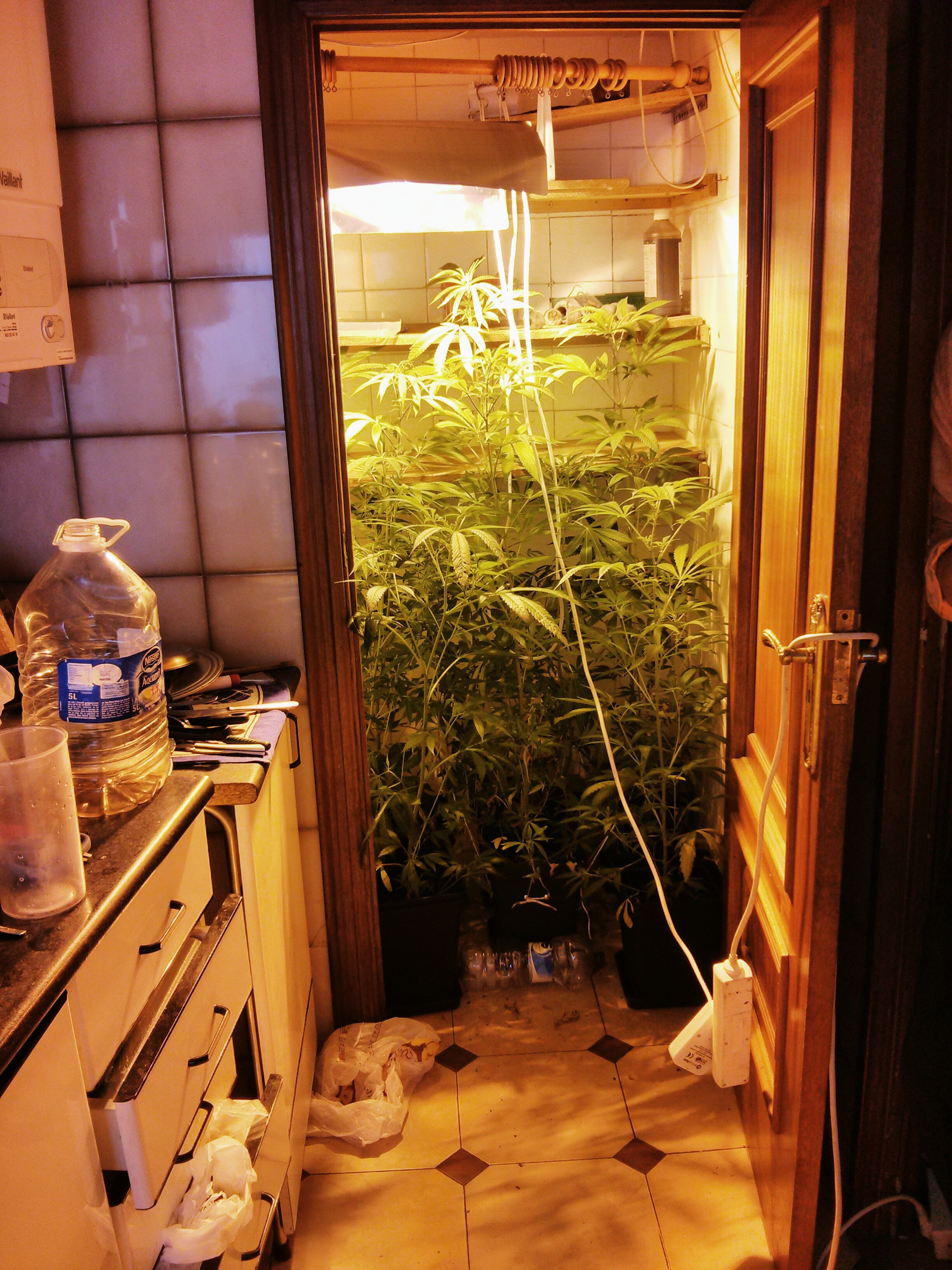 Marijuana grow house cleanup